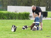 Puppy attack on Callum!