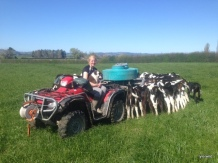 Kylie with Drift on the farm
