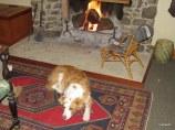 Tui warming up