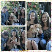 Daisy with Bill, Eillen and Cheska