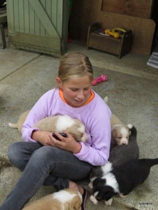 Ella and pups