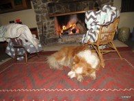maddie warming up