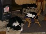 keeping-warm