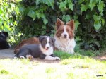 Molly and Rio